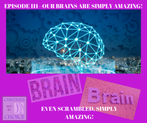Episode 111 Our Brains are Simply Amazing!